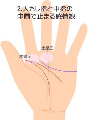 2.人さし指と中指の中間に届く感情線です。