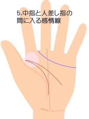 5.中指と人差し指の間にはいる感情線です。
