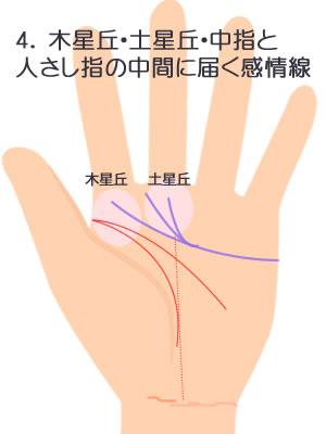 3.3つにわかれて木星丘・土星丘。中指人差し指の間に届く感情線です。
