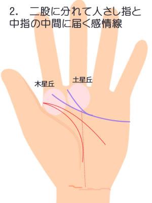 2.木星丘と人差し指と中指の間に届く感情線です。