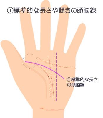 標準的な長さや傾きの頭脳線です。
