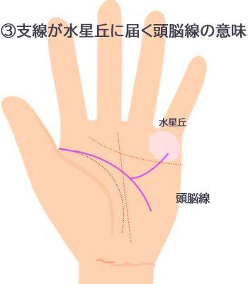 枝分かれした支線が水星丘に届く頭脳線の意味です。