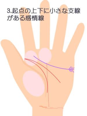3.起点に小さな上下の支線がある感情線です。