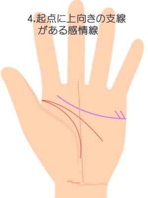 起点に上向きの短い支線がある感情線です。