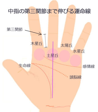 中指の第三関節まで伸びる運命線です。