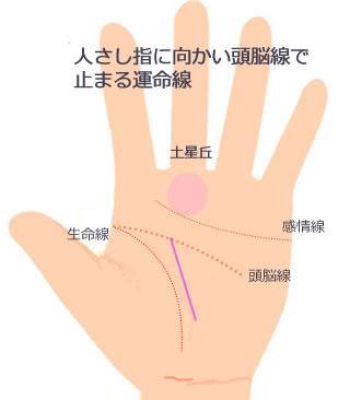 人さし指に向かい頭脳線で止まる運命線です。