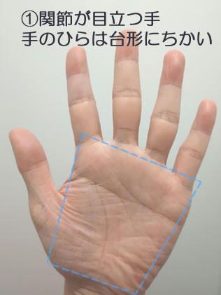 ①v手のひらの形が台形に近く関節が目立つタイプの